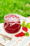 Red Currant Jam, copy space for your text Royalty Free Stock Photography