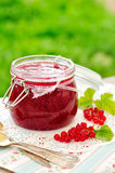 Red Currant Jam, copy space for your text. Red Currant Jam, Summer Preserves stock photography