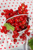 Red currant jam Royalty Free Stock Photography
