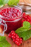 Red currant jam with fresh berry on wood background Royalty Free Stock Photo