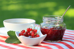 Red currant jam and tea Royalty Free Stock Photos