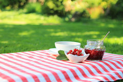 Red currant jam and tea in the garden. Red currant jam and tea in the summer garden royalty free stock photography