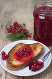 Red currant jam  . Stock Photos