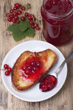 Red currant jam  . Stock Photography
