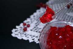 Red currant jelly in glass bowl against black background Stock Image