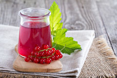 Red currant jelly in a jar Stock Images