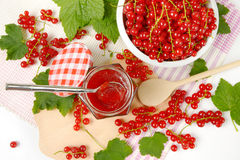 Red currant jelly Stock Photos