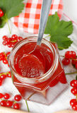 Red currant jelly Royalty Free Stock Image