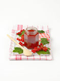 Red currant jelly Royalty Free Stock Photos