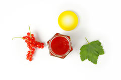Red currant jelly Royalty Free Stock Images