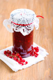 Red currant jelly sauce Stock Photos
