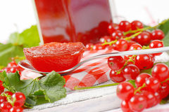 Red currant jelly Royalty Free Stock Photo