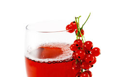 Red currant juice Royalty Free Stock Photos