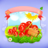 Red currant label design Royalty Free Stock Photo