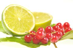 Red currant  and lemon Royalty Free Stock Image
