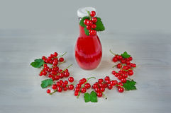 Red currant liqueur in the little glass and bottle with berries. On the white wooden background stock images