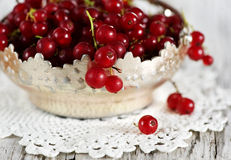 Red currant in the metallic basket Stock Photo