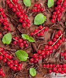 Red currant and mint Royalty Free Stock Photos