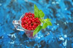 Red currant with mint on a blue background. Top view. The concep. T is healthy food, vitamins, diet and vegetarianism Stock Photos