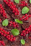 Red currant and mint with chocolate. Inside, indoors, interiors, food, aliment, nutrition, nourishment, confections, confectionery, fruit, redcurrant, leaf royalty free stock image