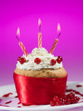 Red currant muffin celebration Stock Images