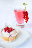 Red currant muffin Royalty Free Stock Images