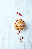 Red currant muffin Royalty Free Stock Image