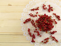 Red currant on the napkin Stock Images