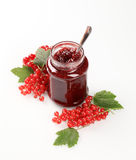 Red currant preserve. Jar of red currant preserve - still life Stock Photos