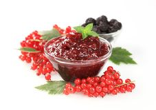 Red currant preserve Stock Images