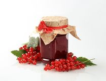 Red currant preserve. Jar of homemade red currant preserve - studio Royalty Free Stock Images