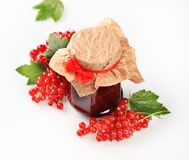 Red currant preserve Stock Image