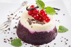 Red Currant Pudding Stock Image