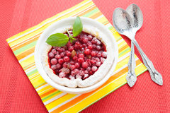 Red currant pudding in white baking dish, berry pie Stock Images