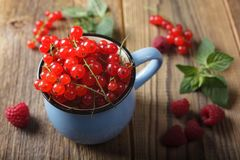 Red currant and raspberries Stock Photo