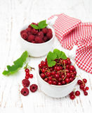 Red currant and raspberries Stock Images
