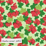 Red currant seamless pattern Stock Image