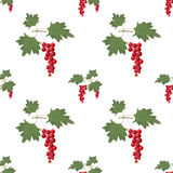 Red currant seamless pattern Stock Photos