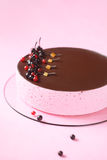 Red Currant Souffle Cake with chocolate glaze Royalty Free Stock Image