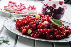 Red currant sponge cake. Plate with Assorted summer berries, raspberries, strawberries, cherries, currants, gooseberries. Stock Photo