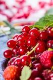 Red currant sponge cake. Plate with Assorted summer berries, raspberries, strawberries, cherries, currants, gooseberries. Fresh summer garden fruit Royalty Free Stock Photos