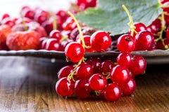 Red currant sponge cake. Plate with Assorted summer berries, raspberries, strawberries, cherries, currants, gooseberries. Royalty Free Stock Images