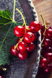 Red currant sponge cake. Plate with Assorted summer berries, raspberries, strawberries, cherries, currants, gooseberries. Stock Photos
