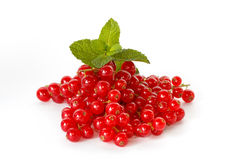 Red currant with a sprig of mint Royalty Free Stock Image