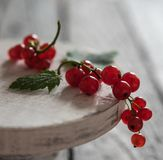 Red currant on the stand wood table summer berries morning light macro. Rustic royalty free stock images