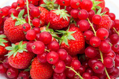 Red currant and strauberry. An fruit plate of red berries and strawberry Royalty Free Stock Photo