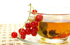 Red currant and tea. Red currant and herbal tea in a transparent cup royalty free stock image