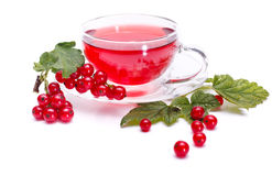 Red currant tea and fresh fruit Royalty Free Stock Photos