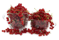 Red currant in two bowls Stock Photo