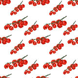 Red currant on white background. Watercolor hand made. Seamless colorful pattern Royalty Free Stock Photography